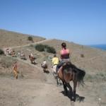 horseTour (10)