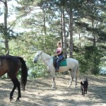 horseTour (14)