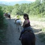horseTour (17)