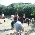 horseTour (18)