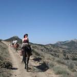 horseTour (21)