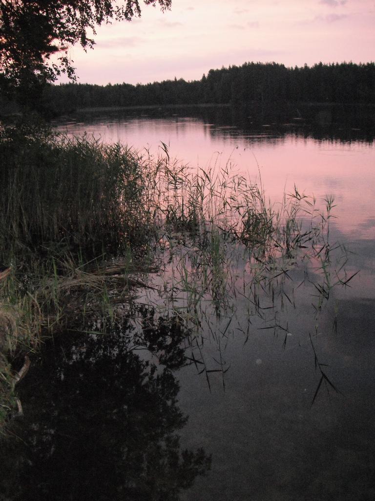 Volosno_aug_13 (134)w