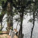 43_Ktulhu lake 20_2015 (64)