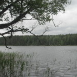 50_Ktulhu lake 20_2015 (79)