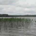 54_Ktulhu lake 20_2015 (82)