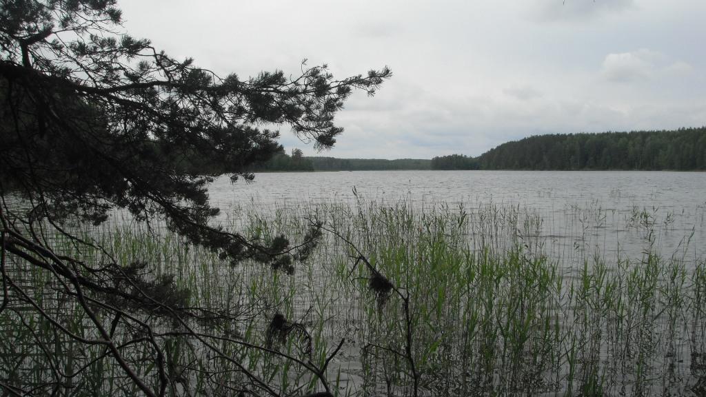 Ktulhu lake 20_2015 (101) w